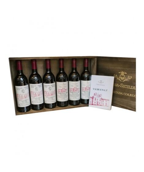 VEGA SICILIA VALBUENA 5º ESTUCHE COLECCIÓN (6 Botellas)